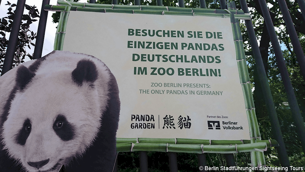Zoo de Berlin Tour